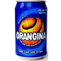 B20 Orangina (25cl)